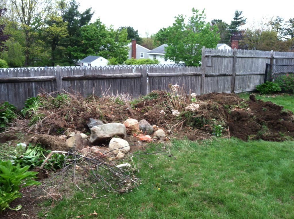 New Lawn Installation Sod Installation Landscaping