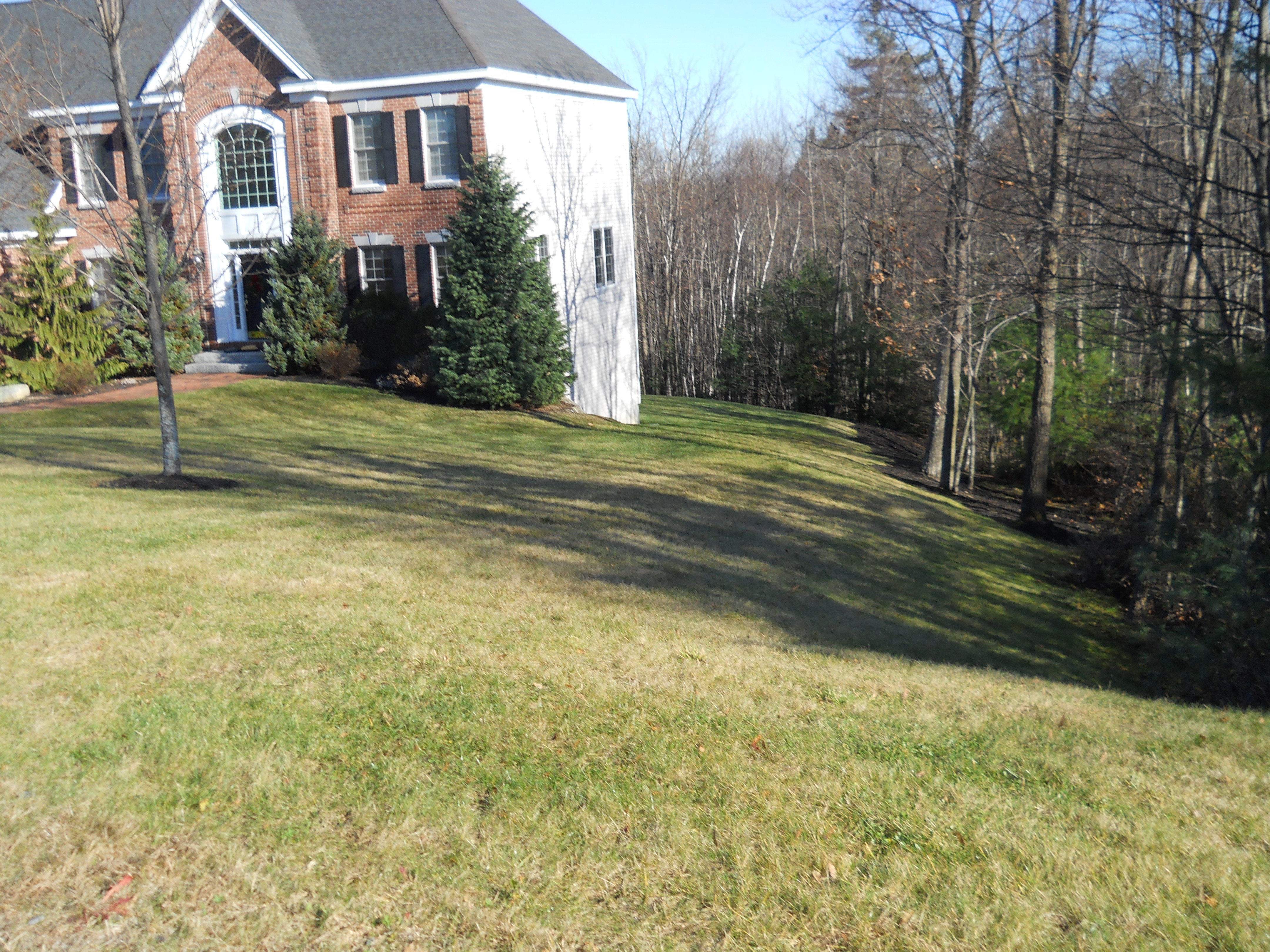 spring clean up in nh spring landscaping services