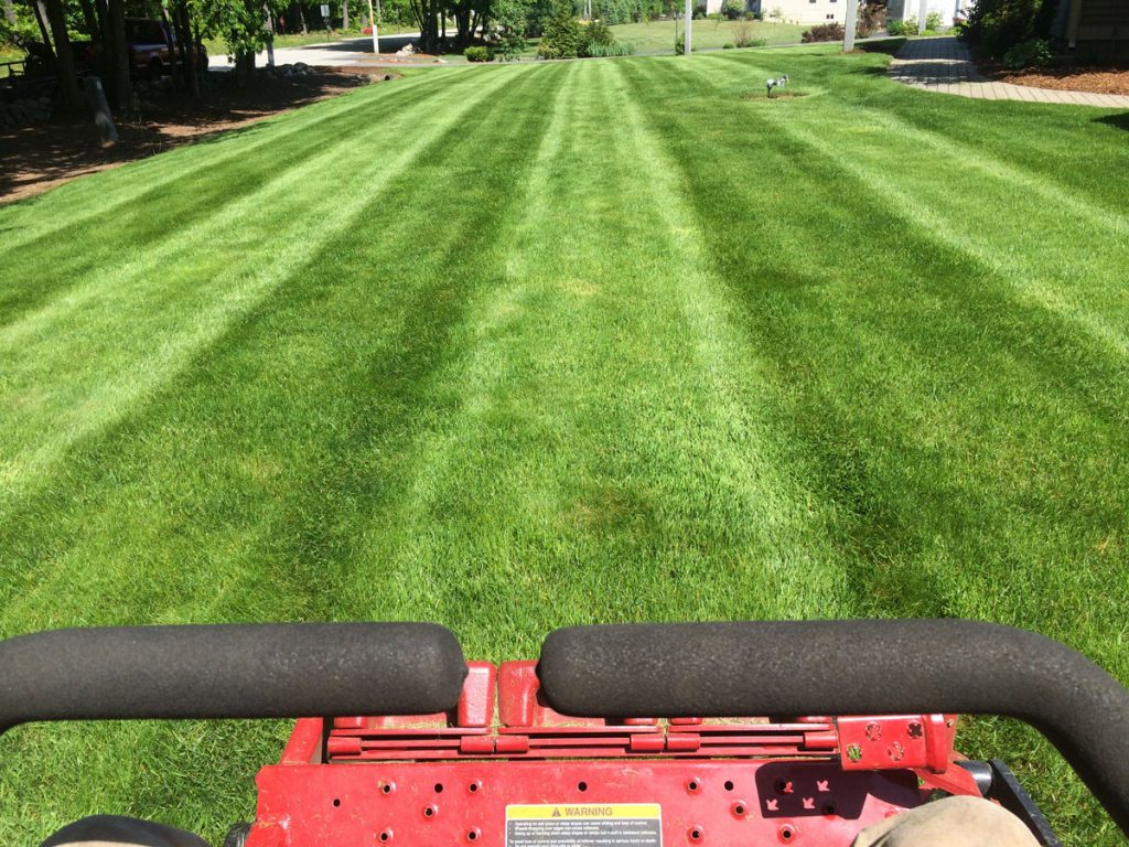 Lawn mowing service for homes businesses in nh firman for Lawn care and maintenance