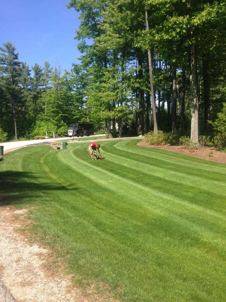Lawn Mowing Service for Homes